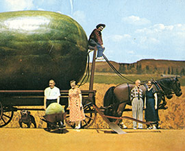 watermelon wagon postcard